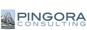Pingora Consulting